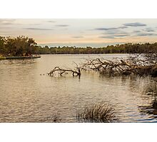 Swan River from The Esplanade, Ascot, Perth, W.A. Photographic Print