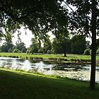 Riverside, Shugborough by Frances Knight