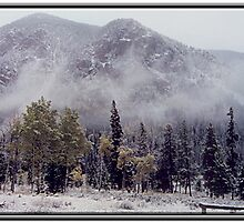 BRIDGER WILDERNESS WINTERSCAPE by Leigh Karchner