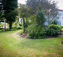 Backyard Nature by TheGoobs