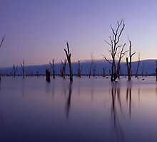 Lake Mulwala, NSW/Victoria by Matt  Lauder