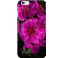 Shocking Pink and Fuchsia - a Vivid Succulent Bouquet iPhone Case/Skin