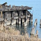 Old Dock Port Huron Michigan by marybedy