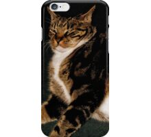 What a smug cat!  iPhone Case/Skin