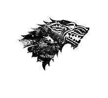 House Stark Black Worn Photographic Print