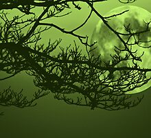 Green Moon by elisab
