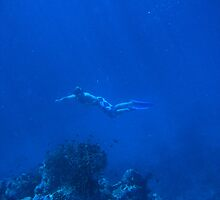 Deep Blue by Colin Scougall