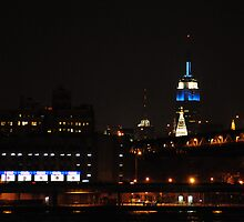 Empire State lit-up for Hanukah by sholder