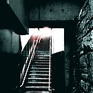 Stairs by Ani Corless