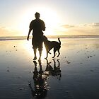 dog beach sunset by Bruce  Dickson