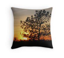torrey pine sunset Throw Pillow