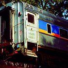 Dormant Traincar by monotonouslangour