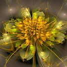 Marigold by Chazagirl