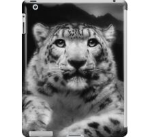 Himalayan Eve iPad Case/Skin