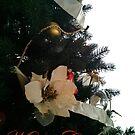 Merry Christmas - Card by ArkelAngel