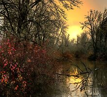 A Reflection of Life by Charles & Patricia   Harkins ~ Picture Oregon