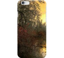 A Reflection of Life iPhone Case/Skin