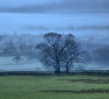 Early Morning Coniston  by sootycat669