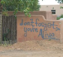 Wise Words From A Wall by FreezingPoint