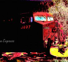 nightmare express by Cheryl Dunning