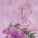 Lilac Fragrance by Sandra Foster