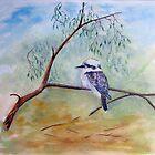 Beautiful Birds of Australia by Faye Doherty