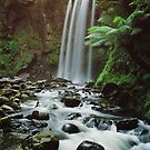 Hopetoun Falls by Travis Easton