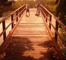 bridge by leighroy