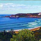 Catherine Hill Bay, NSW, Australia by Carole Elliott