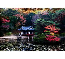 Asian Garden Photographic Print