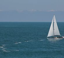 sail in the wind by MMLphotography