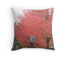 speed 30 Throw Pillow