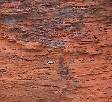 Australia, red rock  by Tom McDonnell