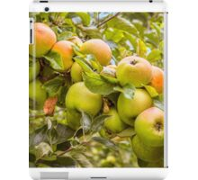 Little Green Apples iPad Case/Skin