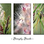 Simply Seeds by Leoni Mullett