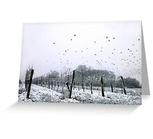 weather for Hitchcock? Greeting Card
