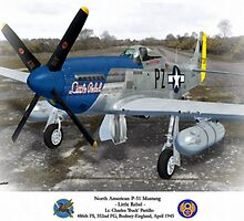 """North American P-51 """"Little Rebel"""" by A. Hermann"""