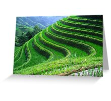 Perfect terraces Greeting Card