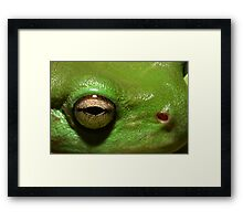 """Kermit"" the Frog Framed Print"