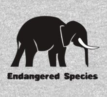 Endangered Species Elephant by Ryan Houston