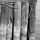 Old Pilings 21 Black and White by marybedy