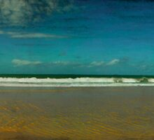 Wandering Beach by Marnie Hibbert