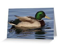 Reflections and Ripples Greeting Card