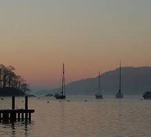 Morning mist by cboar