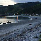 Coromandel Beach at Sunset by avionz