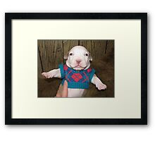 The Little Fashionista Framed Print