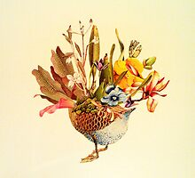 Duck Flower by warrener