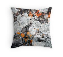 Orange and Grey Lichen #1 Throw Pillow