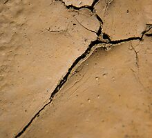 Mud Crack by Syman  Kaye