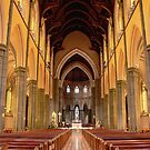 St.Patricks Cathedral  by Larry Davis
